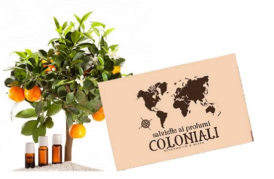 salviette coloniali